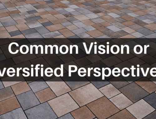 Common Vision or Diversified Perspectives?